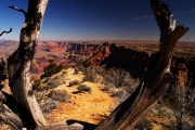 Ageless Canyon